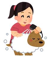 犬 洗う.png